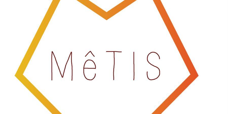 Adhésion annuelle Mêtis - Mêtis