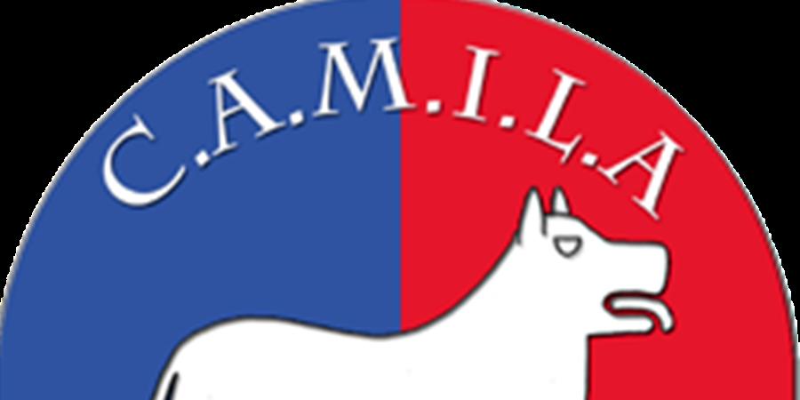 Adhésion 2020 CAMILA-NEA - CLUB DES AMATEURS DE MOLOSSOIDES IBERIQUES ET LATINO-AMERICAINS-NORD EUROPEENS ET ASIATIQUES (C.A.M.I.L.A-N.E.A)