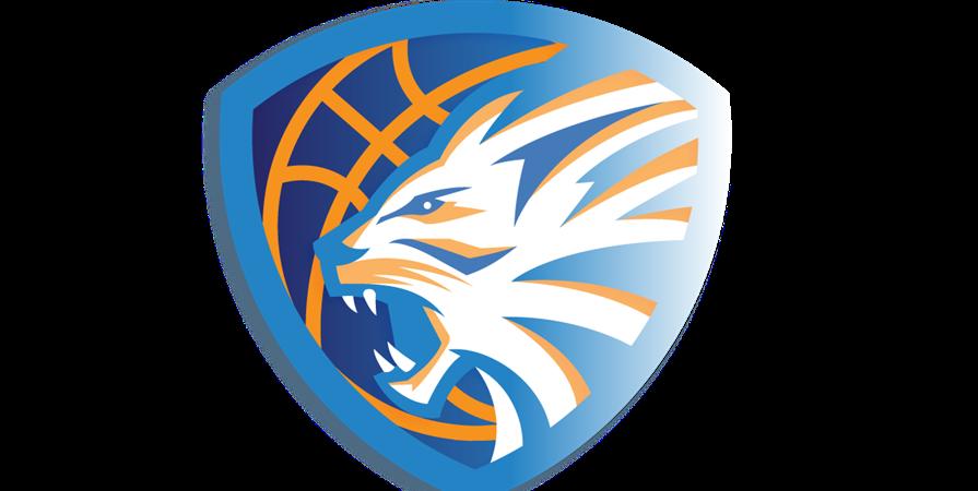 Inscription Basketball - ENTENTE SPORTIVE DE MASSY BASKET