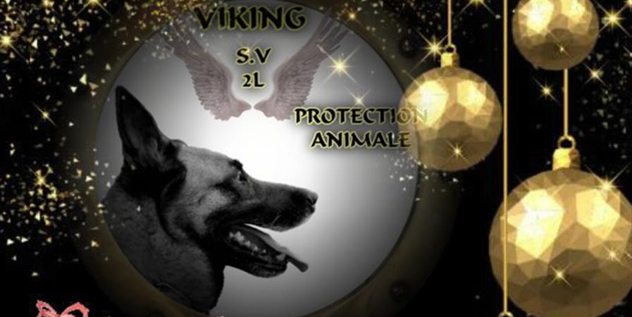 ADHÉSION ANNÉE 2020 - Viking SV2L Protection Animale