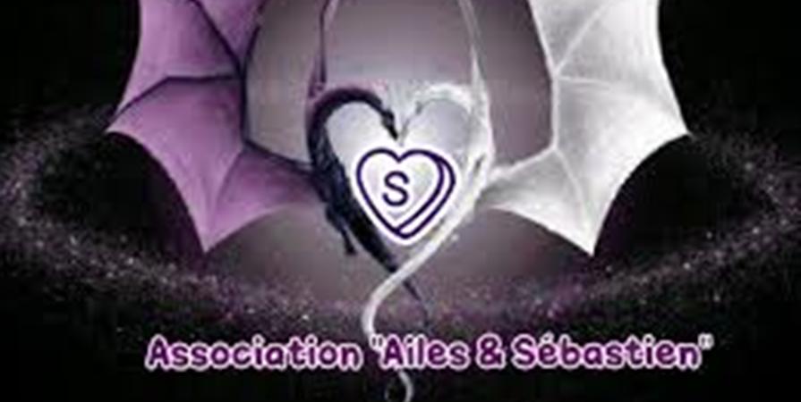 ADHESION 2019 du 01/01/19 au 31/12/19 - AILES ET SEBASTIEN