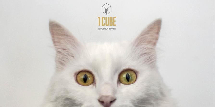 Adhésion association 1CUBE - 1CUBE