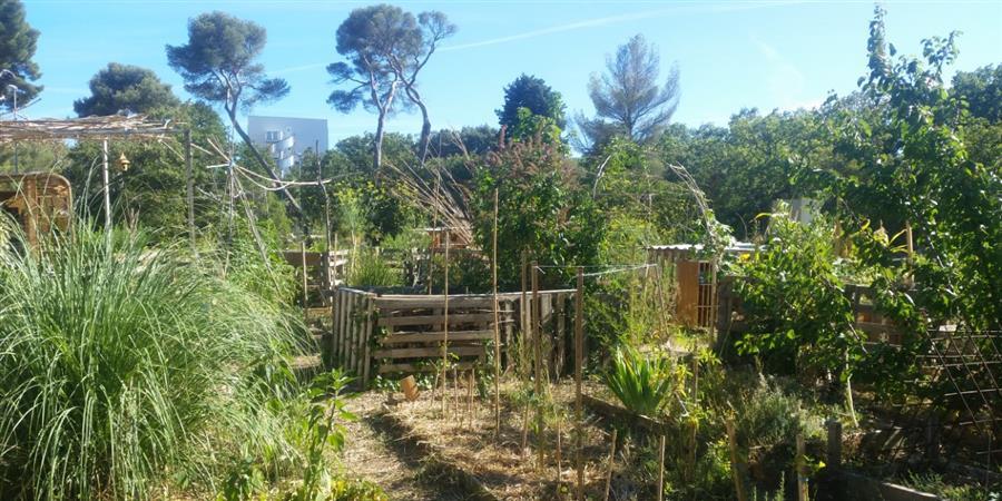 """Bulletin d'adhésion du """"Jardin Communautaire de Luminy"""" - Le Jardin Communautaire de Luminy"""