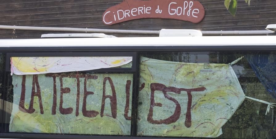 Adhésion Tête à l'ESt 2018-2019 - La Tete à L'est