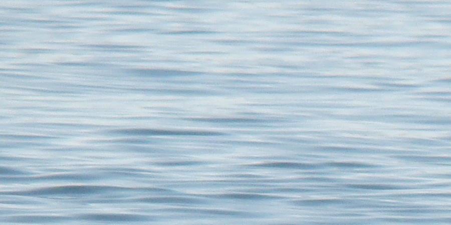 Adhésion 2018-2019 LONGE COTE MEDITERRANEE - LONGE COTE MEDITERRANEE - INTERNATIONAL FRENCH WATERWALKING