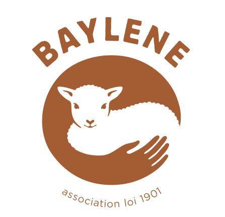 Sauvetage d'animaux errants à Mayotte - La Guilde