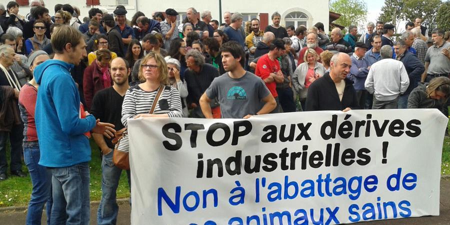Caisse de solidarité pour aider les élevages de Gabat, Domezain et Barcus - INTER-AMAP PAYS BASQUE
