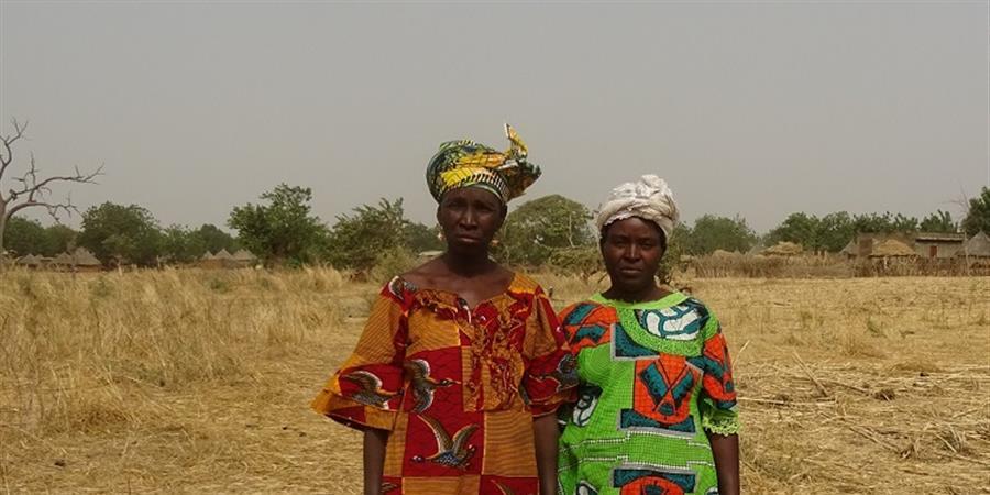 Un jardin maraîcher pour Dibatoumaniya, au Mali - Afrique Agri Solaire