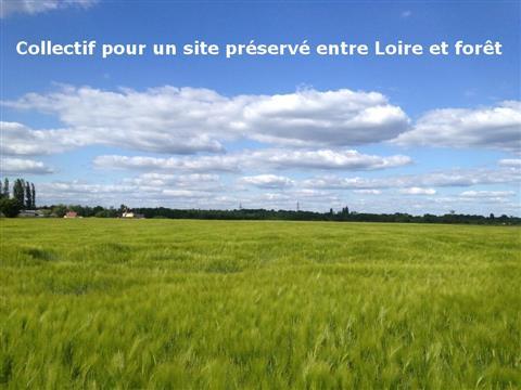 Des terres pas des hypers - Collectif pour un site préservé entre Loire et forêt