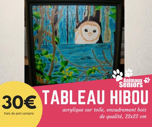 Tableau Hibou - 30€ - Animaux Séniors