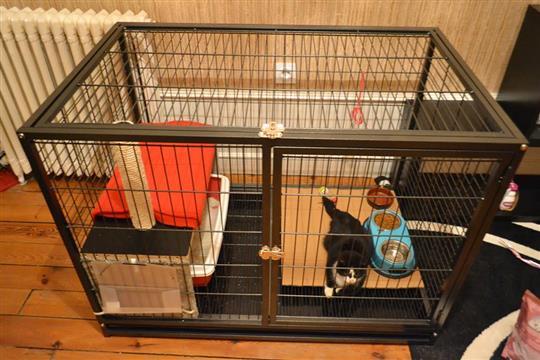 cage de convalescence. Black Bedroom Furniture Sets. Home Design Ideas