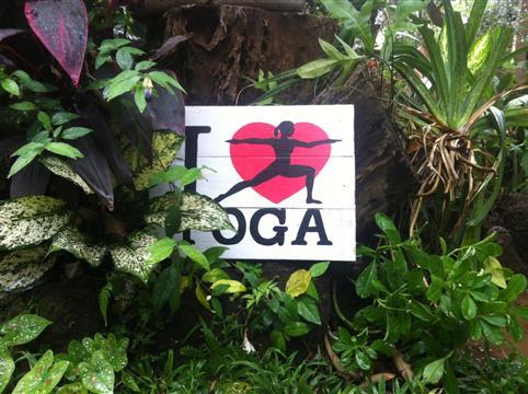 Du yoga, de la méditation et de la reconnexion à la nature dans les lycées  - Terre Essence de Soi