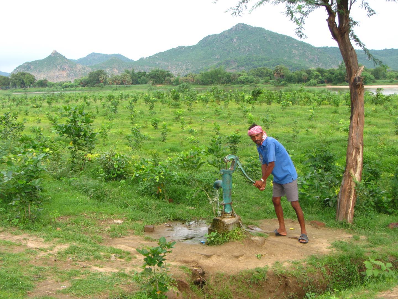 Adhérer à Up2Green Reforestation, c'est garantir plus d'arbres et améliorer la qualité de vie sur la planète - UP2GREEN Reforestation