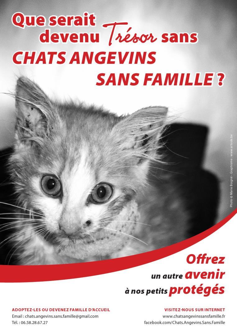 Adhésion à Chats Angevins Sans Famille - Chats Angevins Sans Famille