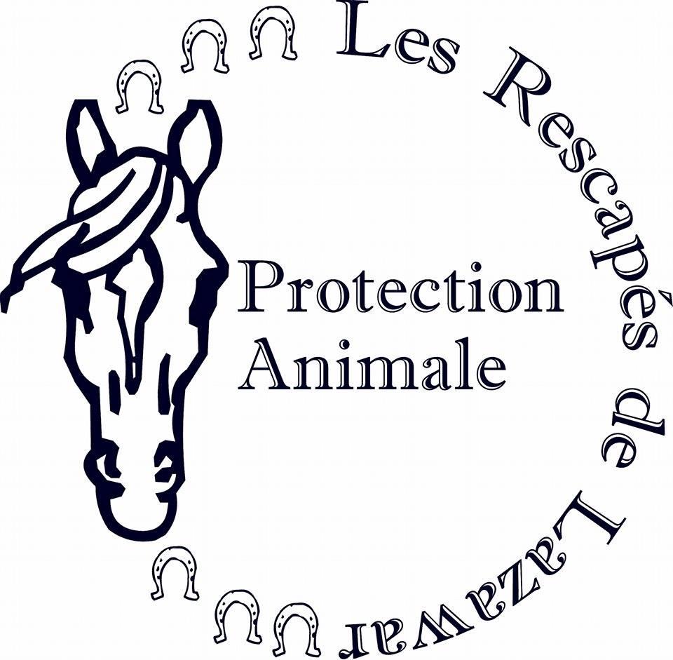 Adhésion 2015 - 2016 Disponible   - Les Rescapes De Lazawar