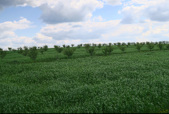 Adhésion 2016 - Agroforesterie Lorraine