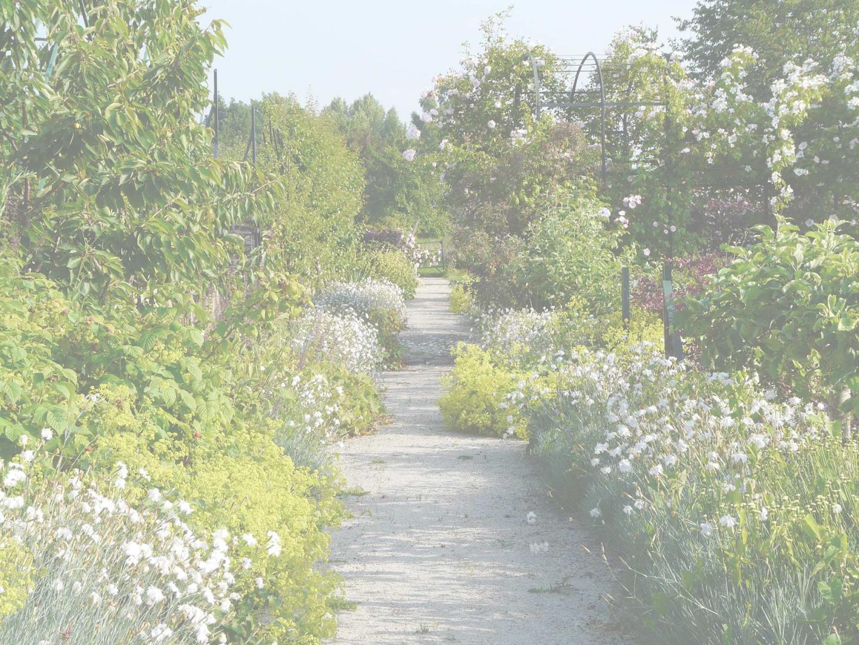 Jardins & Santé - Adhésion où renouvellement de cotisation 2019 - Jardins et Santé