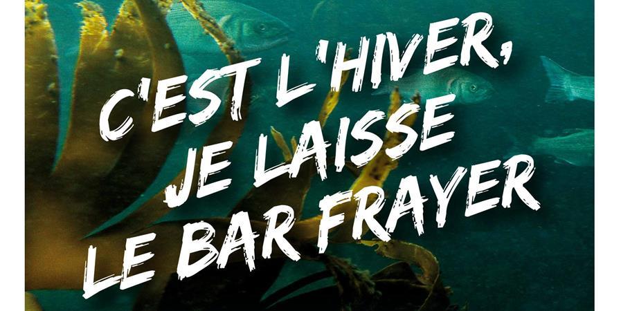 Engagement collectif pour un repos biologique du bar en hiver - Association des ligneurs de la Pointe de Bretagne