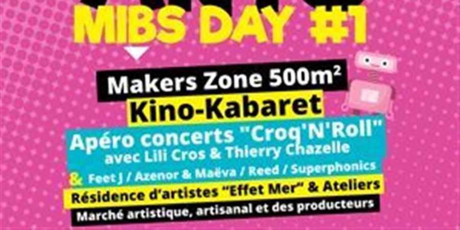 Don pour organisation du MIBS Day - La Vilaine Bidouille