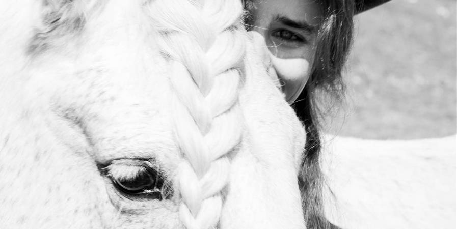 Appel aux dons pour le matériel équestres de l'association - Aux Palabres Équestres