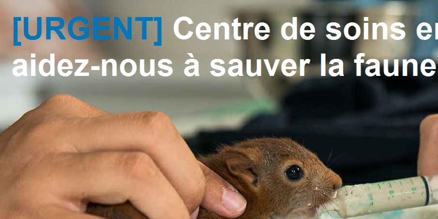 [URGENT] Centre de soins en difficulté : aidez-nous à sauver la faune sauvage ! - LPO Hérault