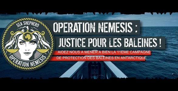OPERATION NEMESIS - SEA SHEPHERD FRANCE
