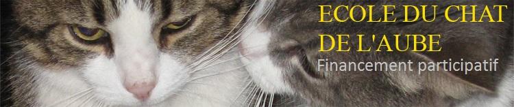 ecole du chat de l aube helloasso