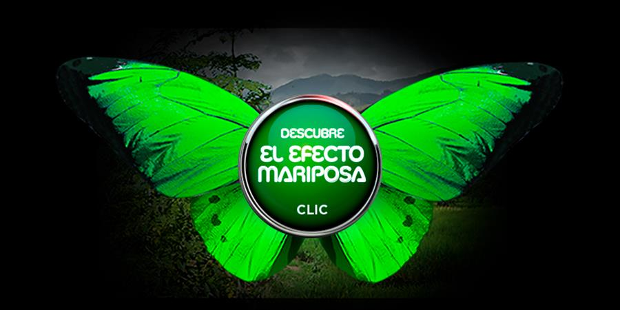 ¡Active el efecto mariposa! - Envol Vert