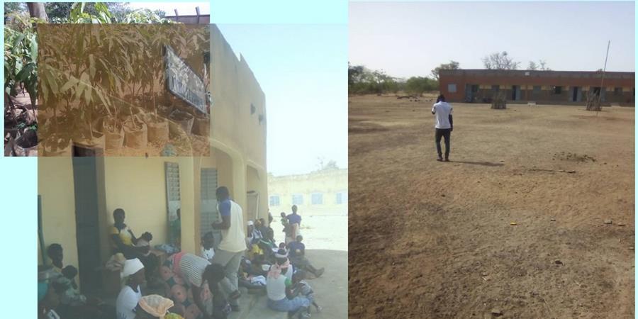 Reboisement de 2 villages au Burkina Fasso - lumassan France