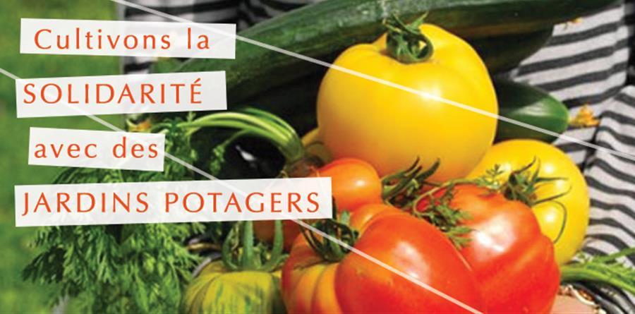 Cultivons la solidarité avec des jardins potagers ! - TERRE ET HUMANISME