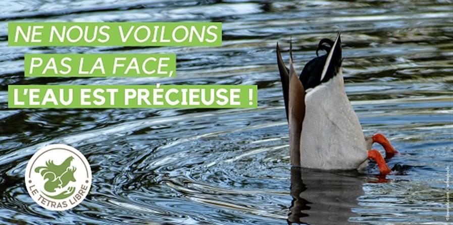 LE TÉTRAS LIBRE choisit de limiter son impact écologique  - Centre de Sauvegarde de la Faune Sauvage des Pays de Savoie