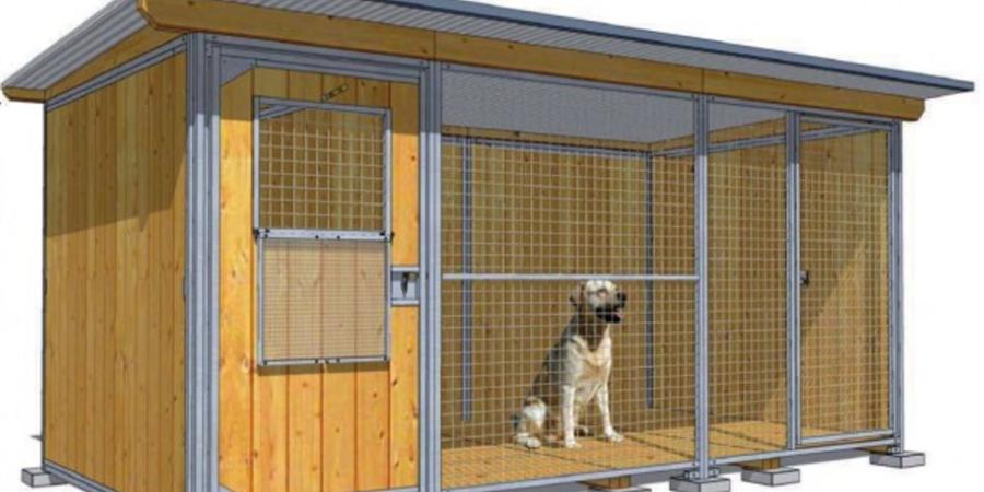 Chenil de réhabilitation pour chiens potentiellement dangereux - In Dog We Trust