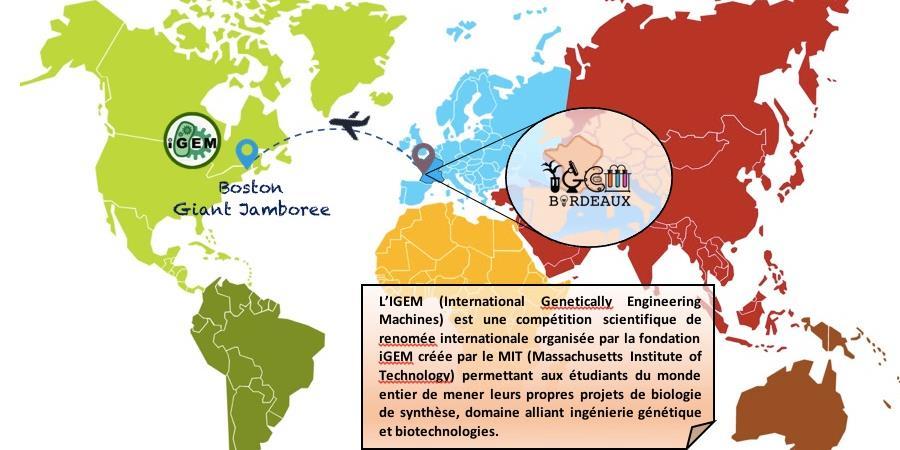 Soutenez le projet d'IGEM Bordeaux 2018 ! - IGEM Bordeaux
