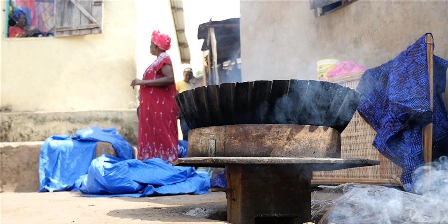 Luttons contre les changements climatiques en Guinée - Coopération Atlantique Guinée 44