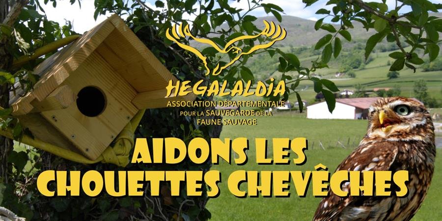 AIDONS LES CHOUETTES CHEVECHES - Hegalaldia