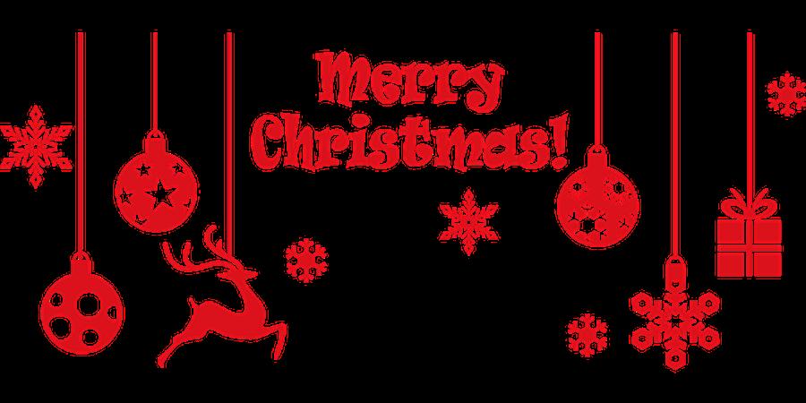 Le Noël des chats - LJD - Les Joyeux Diablotins