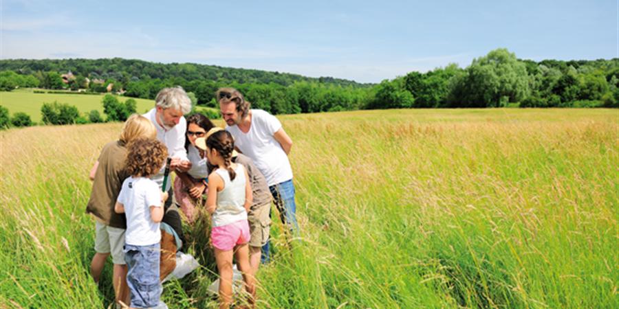 Soutenez le réseau d'éducation à l'environnement en Île-de-France - Graine Île-de-France