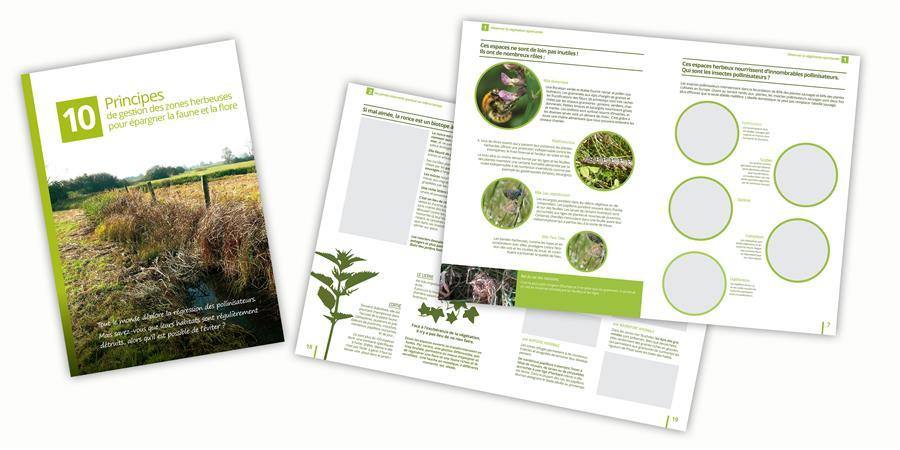 10 principes de gestion des zones herbeuses pour épargner la faune et a flore - ALSACE NATURE