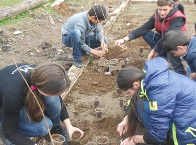 Un avenir pour des plantes et des enfants - Momavali-France