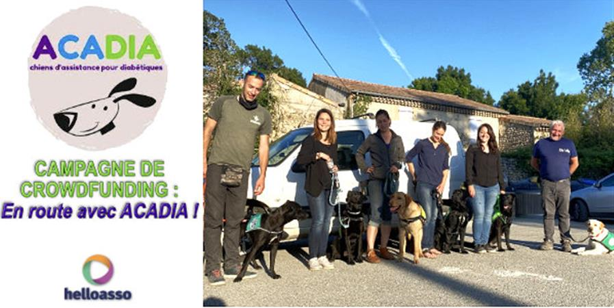 En route avec ACADIA ! Un chien, un enfant, un soutien - ACADIA