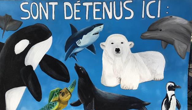 Faites un don : Anti Parcs Marins a besoin de votre aide - Anti Parcs Marins