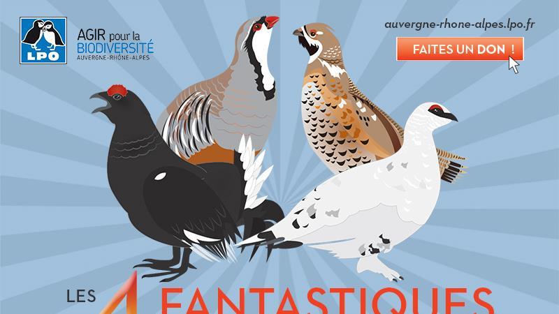 Les 4 fantastiques ont besoin de vous ! - LPO Coordination Auvergne-Rhône-Alpes