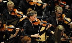 Greater Europe Peace Orchestra -