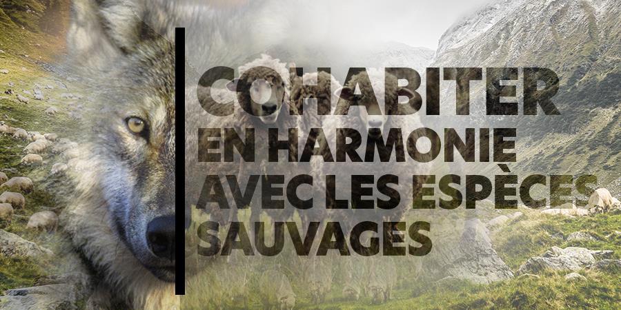 Je fais un don et 1% for the Planet double ma mise pour AVES France - AVES France