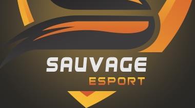 SVG = SAUVAGE ESPORTS  - Sauvage Esports