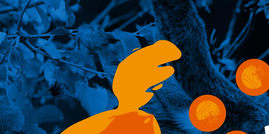 Soutenez le festival Du Bruit Dans l'Arène ! - CEMEA Occitanie