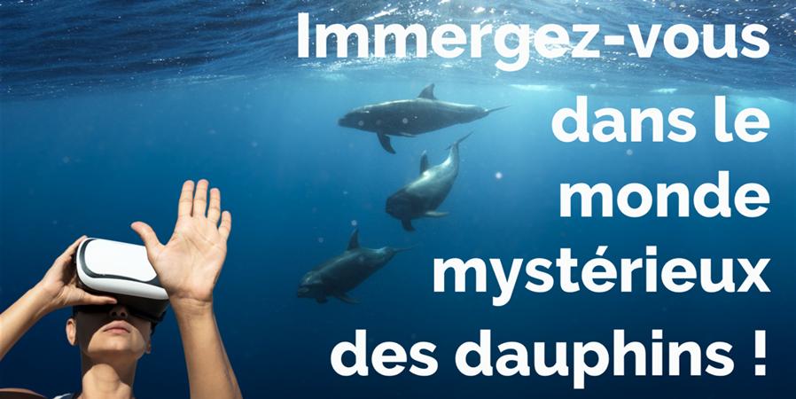 Immergez-vous dans le monde des dauphins ! - MIRACETI
