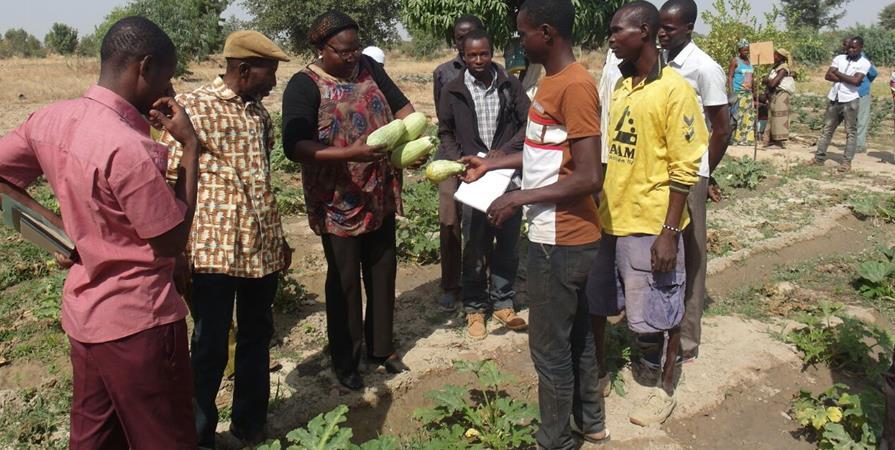 Accès à l'eau pour une coopérative agro écologique au Burkina Faso - Peuples Solidaires 05