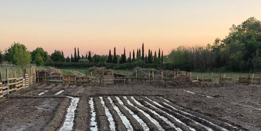 Ensemble pour la 1ère récolte de Gaïa'ddict - Gaïa'ddict