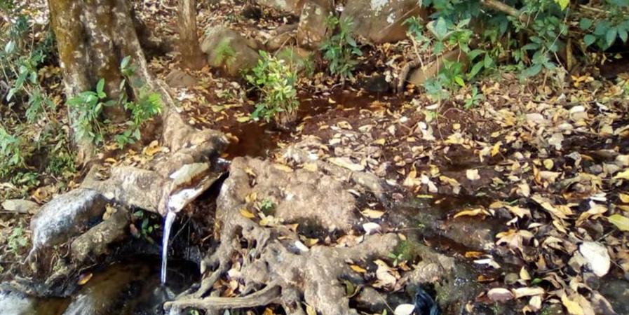 Adduction d'eau potable pour le village de Leyhoolo en Guinée - ASSOCIATION DES JEUNES ET AMIS DE LEYHOOLO
